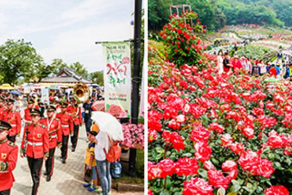 Aroma Bunga Mawar Penuhi Udara di Destinasi-Destinasi Wisata Ini saat Bulan Mei