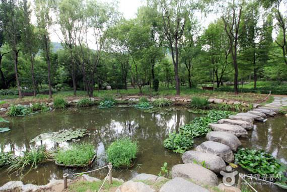 Daegu Arboretum