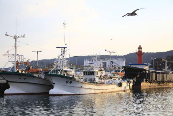 Festival Ikan Teri di Gijang Busan