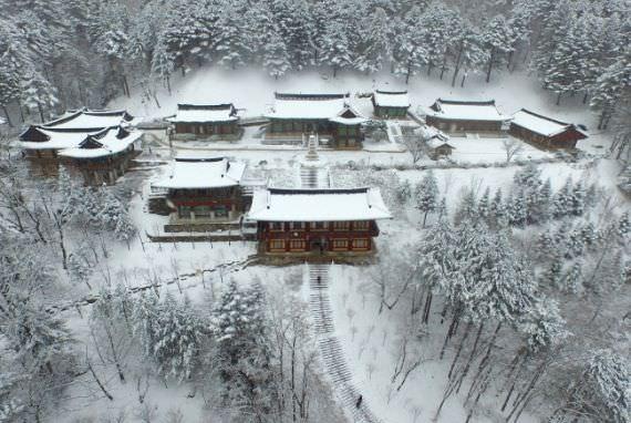 Tujuan Wisata Rekomendasi Korea Tourism Organization untuk bulan Januari