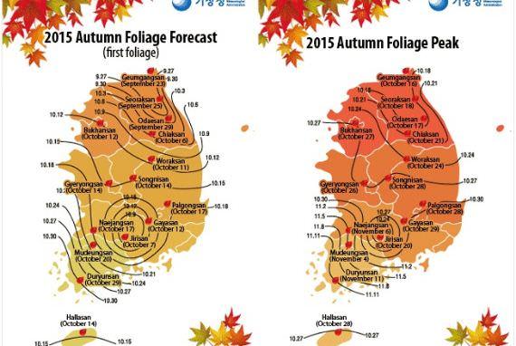 Fenomena Musim Gugur di Korea Tahun 2015 Dimulai dari Gunung Seoraksan