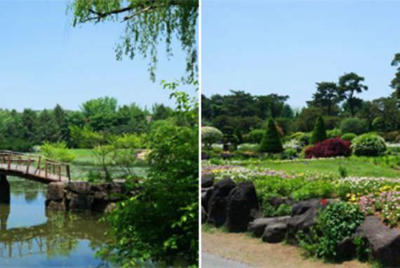Kebun Raya Byeokchoji