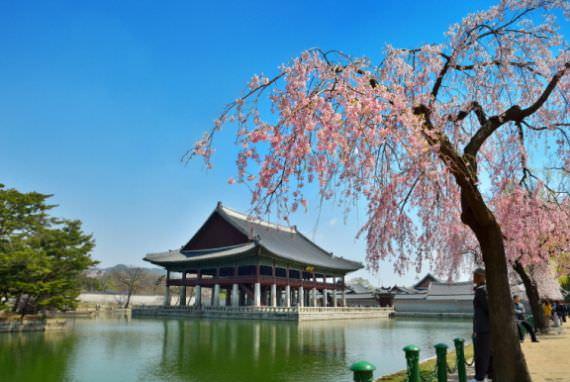 Pembukaan Khusus Paviliun Gyeonghoeru Mulai 1 April