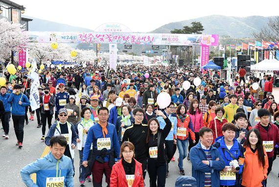 Kompetisi Maraton Cherry Blossom Gyeongju akan Diselenggarakan 9 April!