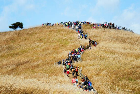 Gunung Mindung  di Jeongseon, gangwon-do