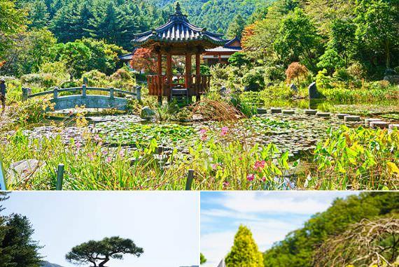 Kolam Cinta Putra Mahkota,  Kolam Seohwayeon