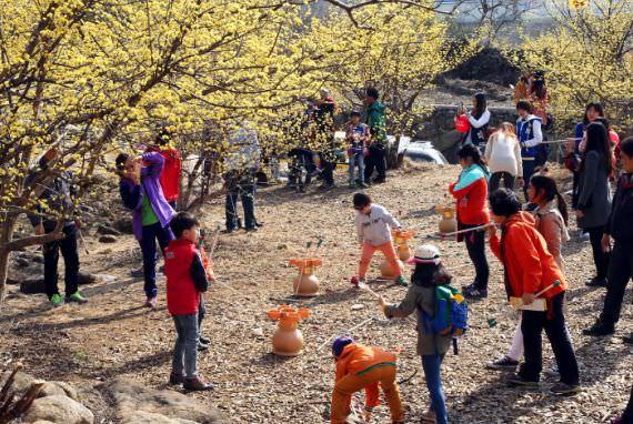 Festival Sansuyu Gurye