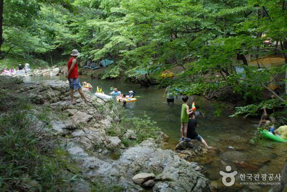 Hutan Rekreasi Nami