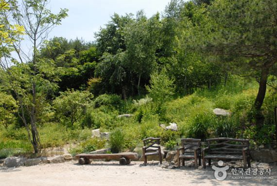 Taman Botani Pyunggang