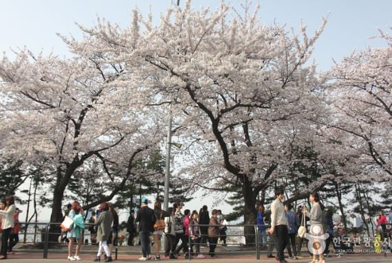 Taman Yeouido