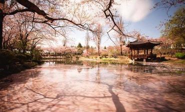 1,000 Tahun Sejarah, Gyeongju