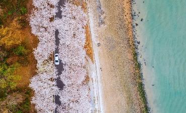 Kontes Pariwisata Korea 2021 Dibuka untuk Souvenir dan Foto Perjalanan