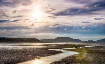 Getbol, Dataran Pasang Surut Korea Menjadi Warisan Dunia Alam UNESCO untuk Keanekaragaman Hayati