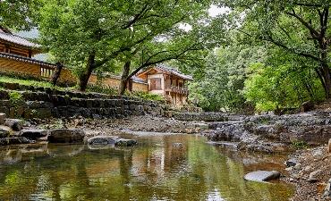 Photo_Mengagumi Alam di Tengah Kedamaian Lembah dan Air Terjun